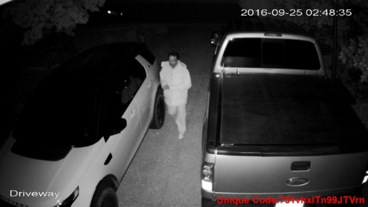 Auto Thief September 2016