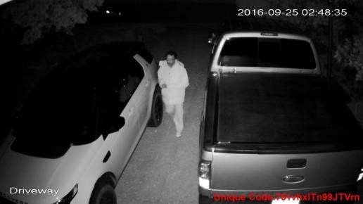 Auto Thief September 2016